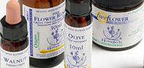 bach-flower-essences-healing-herbs