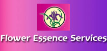 flower-essence-services-usa